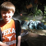 rainforest-cafe2